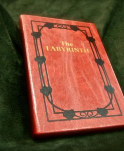 The Labyrinth Sarah's Book Replica iPad / eReader / Kindle / Tablet Cover