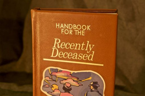 Beetlejuice Handbook for the Recently Deceased iPad / Kindle / eReader Cover