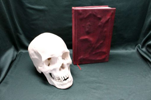 Book of the Damned Replica - eReader / Kindle / iPad / Tablet Cover / Journal (Inspired by Supernatural)