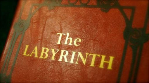 The Labyrinth DVD Movie - Leather Book Replica DVD Case